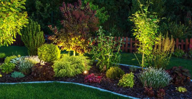 backyard designs - Landscape Lighting - Greenville, NC Chop Chop Landscaping
