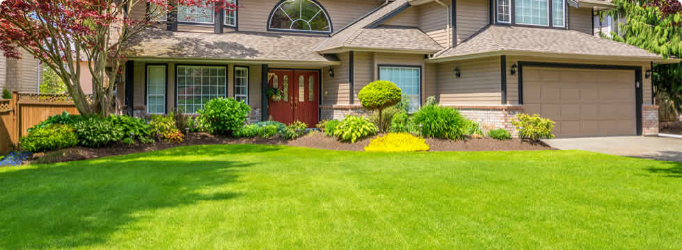 The Grass is Always Greener with Our Pros - Landscaping - Greenville Landscapers - Greenville, NC Chop Chop